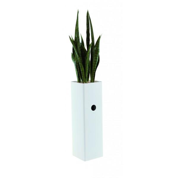 jardini re haute et troite garnie d 39 une sanseveria artificielle. Black Bedroom Furniture Sets. Home Design Ideas