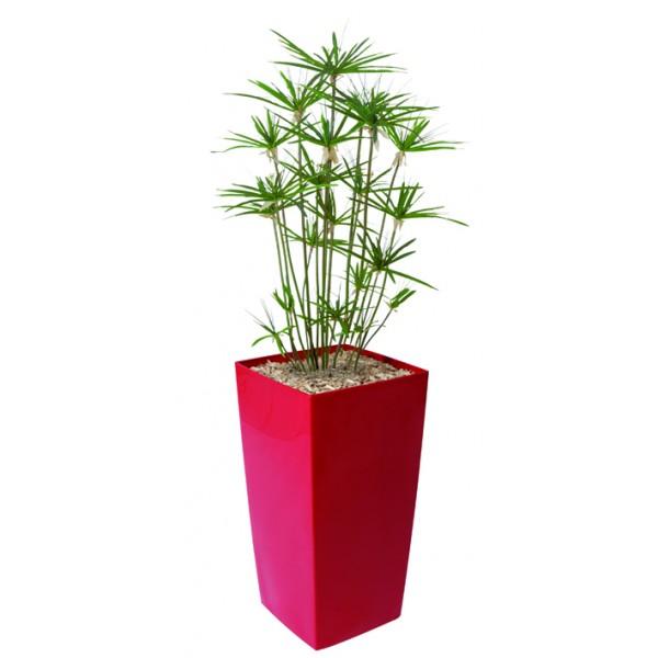 plante artificielle en jardini re. Black Bedroom Furniture Sets. Home Design Ideas